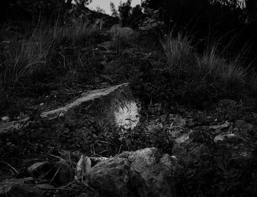 Trailer Barnacas II, Transmedia Project
